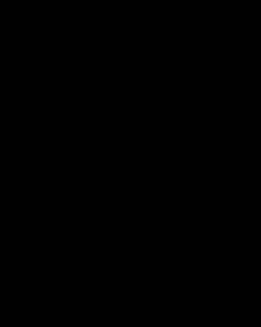 Screenprotector 8080 (Zwart)
